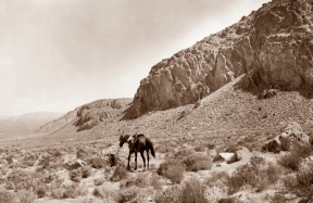 1901. Cedar Mountains by G. K. Gilbert