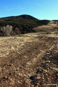 New Pipeline in Central Arizona.  Native chaparral removed, heavily grazed, constant traffic.