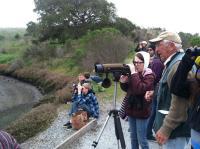 citizen naturalists 2