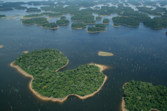 Archipelago of forest islands within the Balbina hydroelectric reservoir, Brazil. Image: Eduardo M. Venticinque via C. Peres
