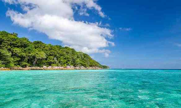 Thailand coral