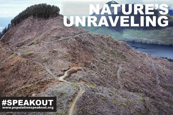 Natures-Unraveling-Clear-Cut