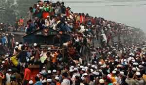 overpopulation