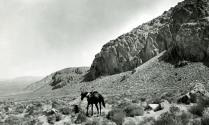 Cedar Mts 1901 - GK Gilbert - USGS