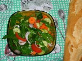 Sowthistle salad by Xufanc -- License--CC BY-SA 3.0